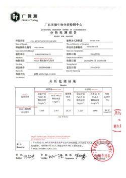 H13 Hepa filter test report